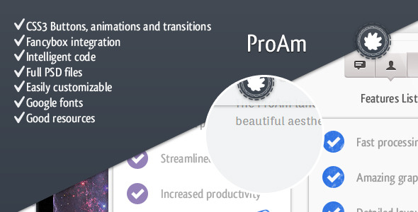 ProAm - Premium Landing Page