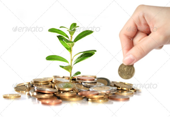 Money and plant. - Stock Photo - Images
