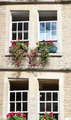 Windows and flowers - PhotoDune Item for Sale