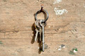 Keys on ring - PhotoDune Item for Sale