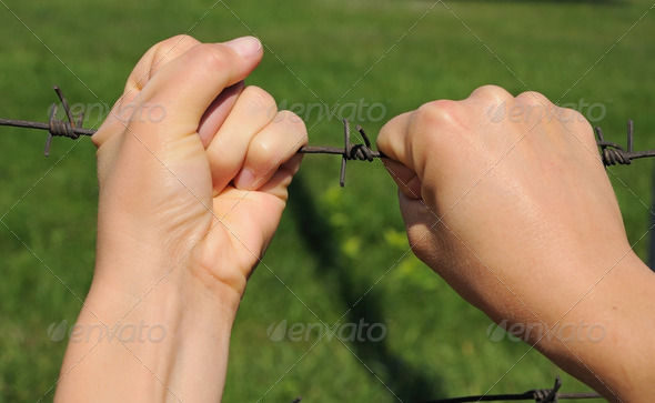 hands on  barbwire - Stock Photo - Images