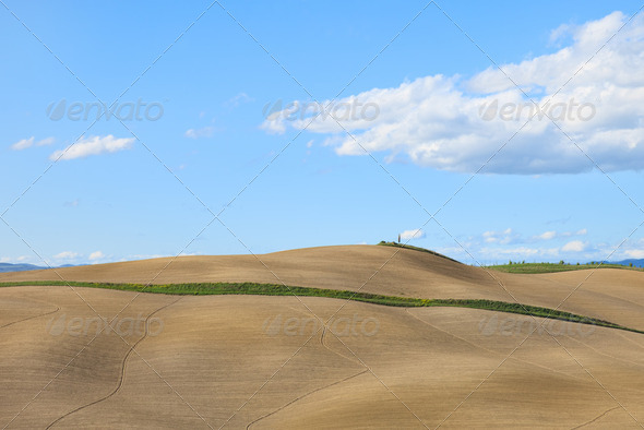 Tuscany, undulating plowed field rural landscape, Siena, Italy. - Stock Photo - Images