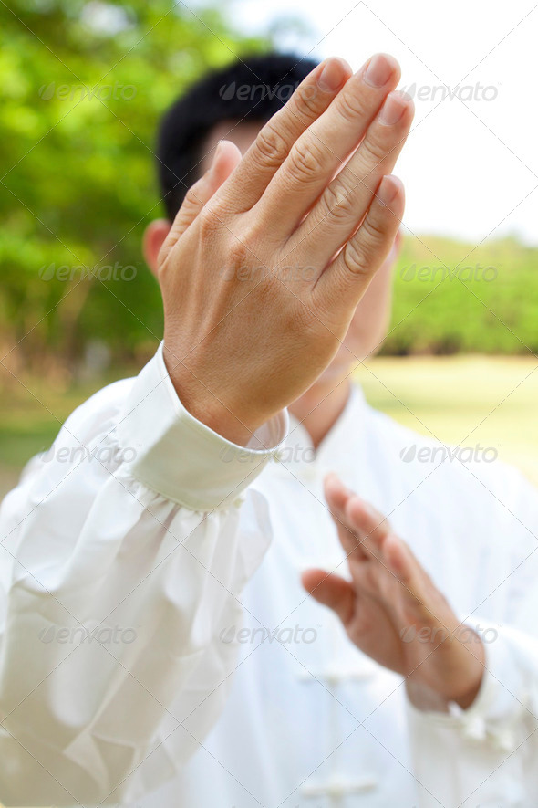 hand of kung fu - Stock Photo - Images