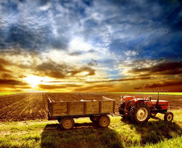 PhotoDune Agriculture 2243090