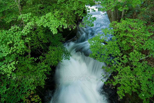 fresh stream - Stock Photo - Images