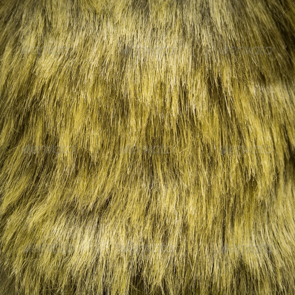Fur Background - Stock Photo - Images