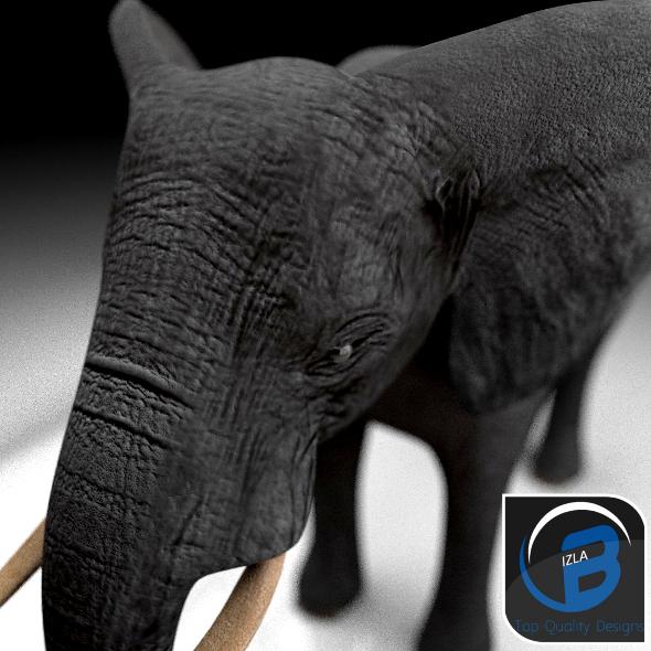 3DOcean African Elephant 3344083