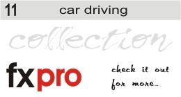 11. Car Driving