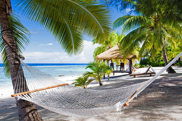PhotoDune Empty hammock between palm trees on a beach 2299316