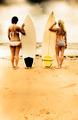 Summer - PhotoDune Item for Sale