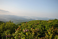 blue ridge parkway hills - PhotoDune Item for Sale