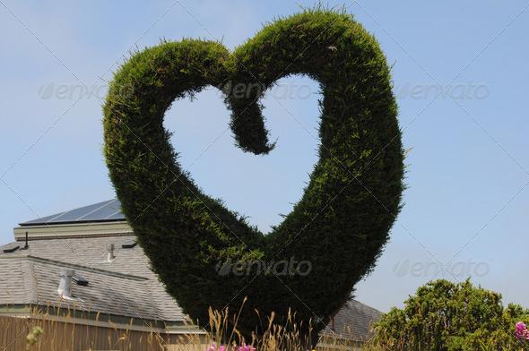 Bodega Bay heart - Stock Photo - Images