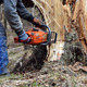 Woodcutter cutting broken tree - PhotoDune Item for Sale