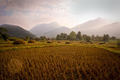 Mountains and Rice Fields in Thailand - PhotoDune Item for Sale