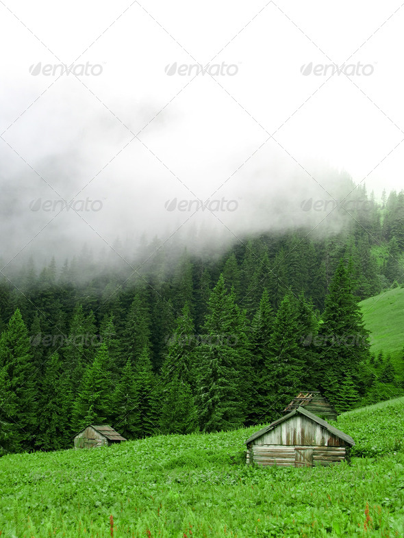 Several old houses - Stock Photo - Images