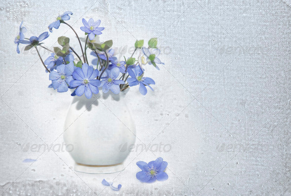 Bunch  of spring flowers - Stock Photo - Images