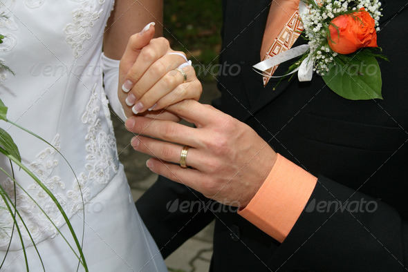 wedding clothes - Stock Photo - Images
