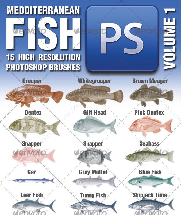 GraphicRiver 15 Mediterranean Fish Brushes Volume 1 3351622