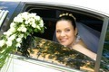 Newlywed - PhotoDune Item for Sale