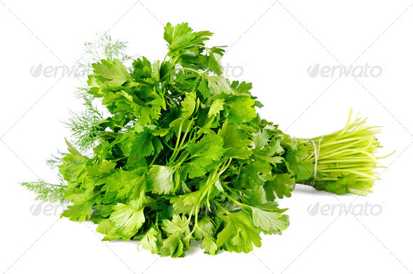 Bunch of parsley isolated on white background - Stock Photo - Images