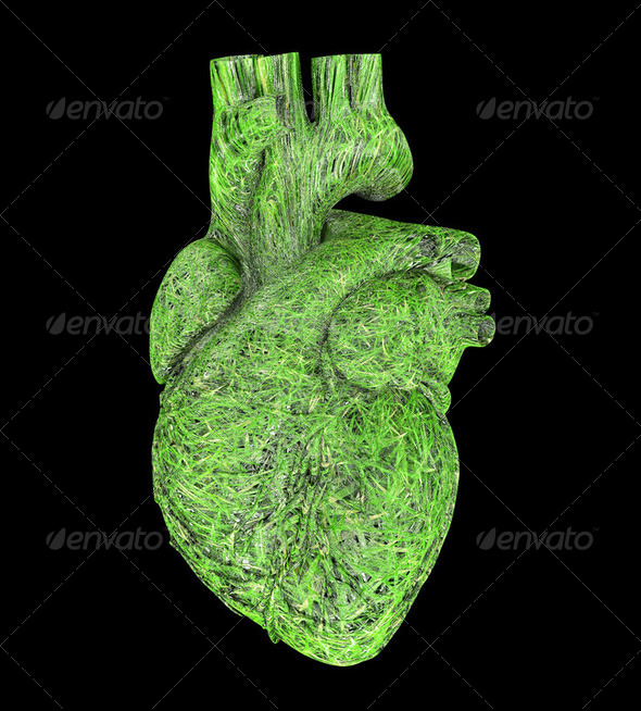Ecological heart - Stock Photo - Images