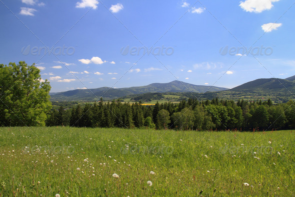 Spring landscape - Stock Photo - Images