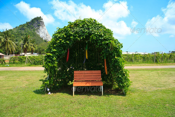 Tree shelter - Stock Photo - Images