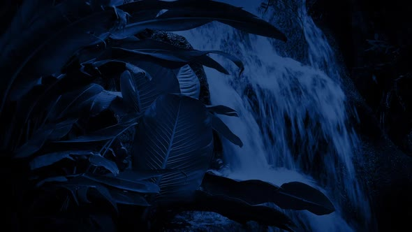 Download Waterfall In The Jungle At Night nulled download