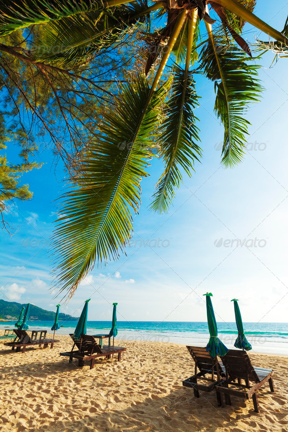 On the beach - Stock Photo - Images