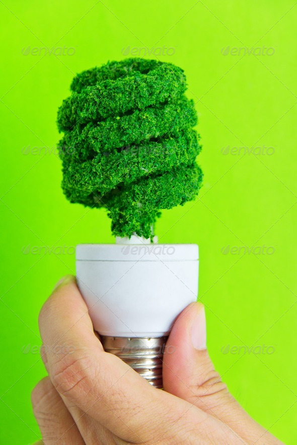 hand holding eco light bulb  - Stock Photo - Images