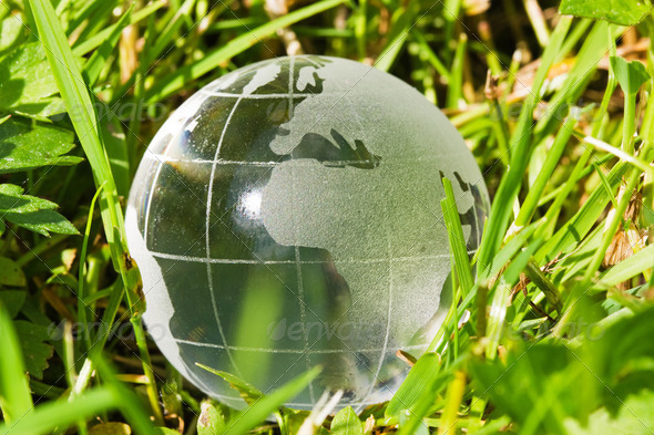 Glass Globe In The Grass - Stock Photo - Images