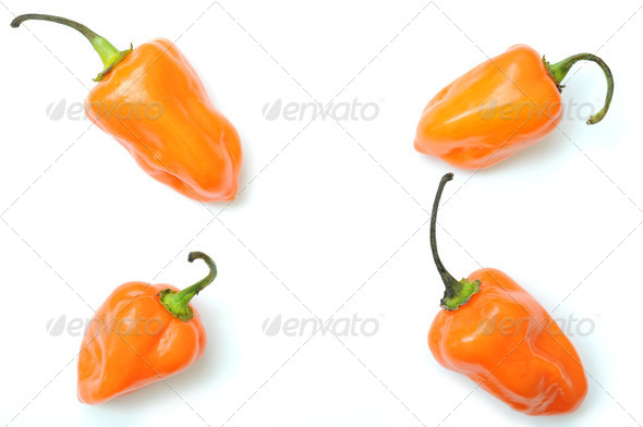 Hot peppers pattern  - Stock Photo - Images
