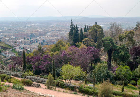 Garden of Granada, - Stock Photo - Images