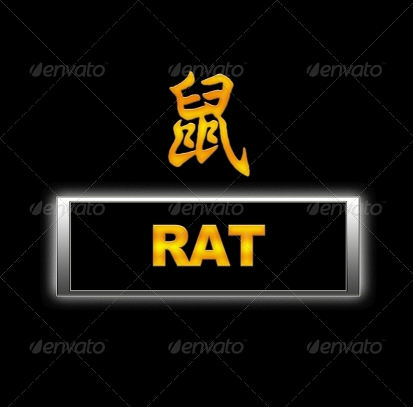 Rat. - Stock Photo - Images