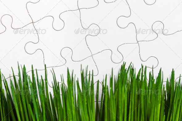 Green grass and Puzzle - Stock Photo - Images