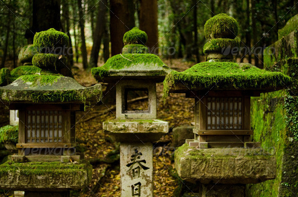 Stone lanterns in Nara - Stock Photo - Images