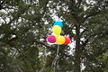 Balloons Floating Away - PhotoDune Item for Sale