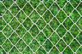 Steel net on green grass. - PhotoDune Item for Sale