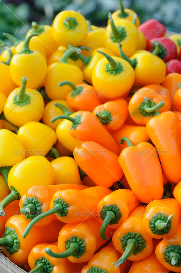 Colorful bell peppers - Stock Photo - Images