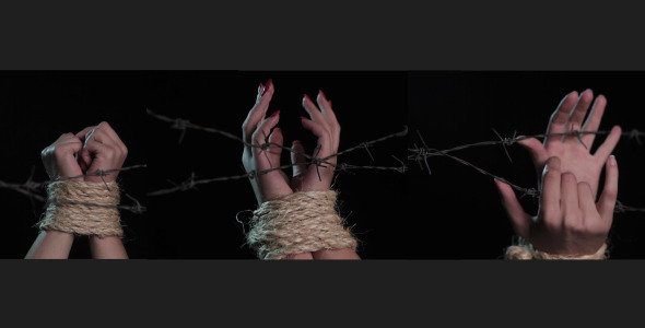 VideoHive Slavery 3 Pack 3360512