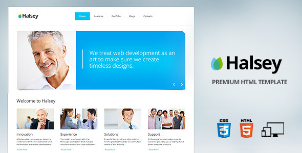 ThemeForest Halsey Premium corporate template 3360968