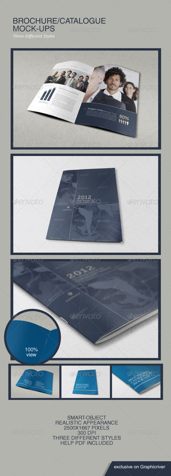 GraphicRiver Bi-Fold Brochure Catalog Mock-Ups 3376157