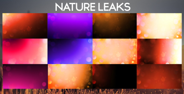 VideoHive Nature Leaks 3386367