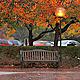 Autumn Rain 4