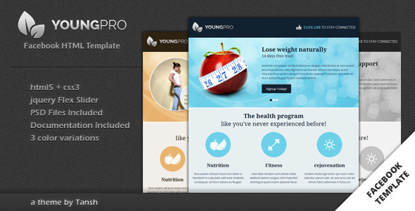 ThemeForest Youngpro HTML Facebook Template 3395155