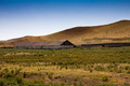 House for livestock in the steppe of Kazakhstan - PhotoDune Item for Sale