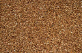 buckwheat seeds background - PhotoDune Item for Sale