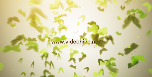 After Effects Project - VideoHive Butterfly Logo 3396788