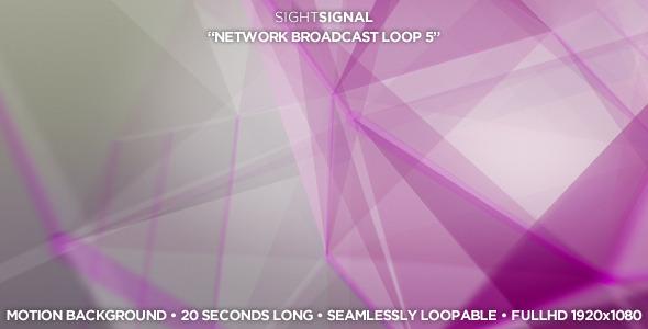 VideoHive Network Broadcast Loop 5 3397039