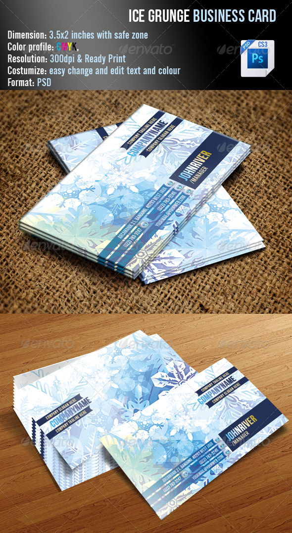 Ice Grunge Business Card